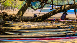 Surfboards in the shade near the jungle.