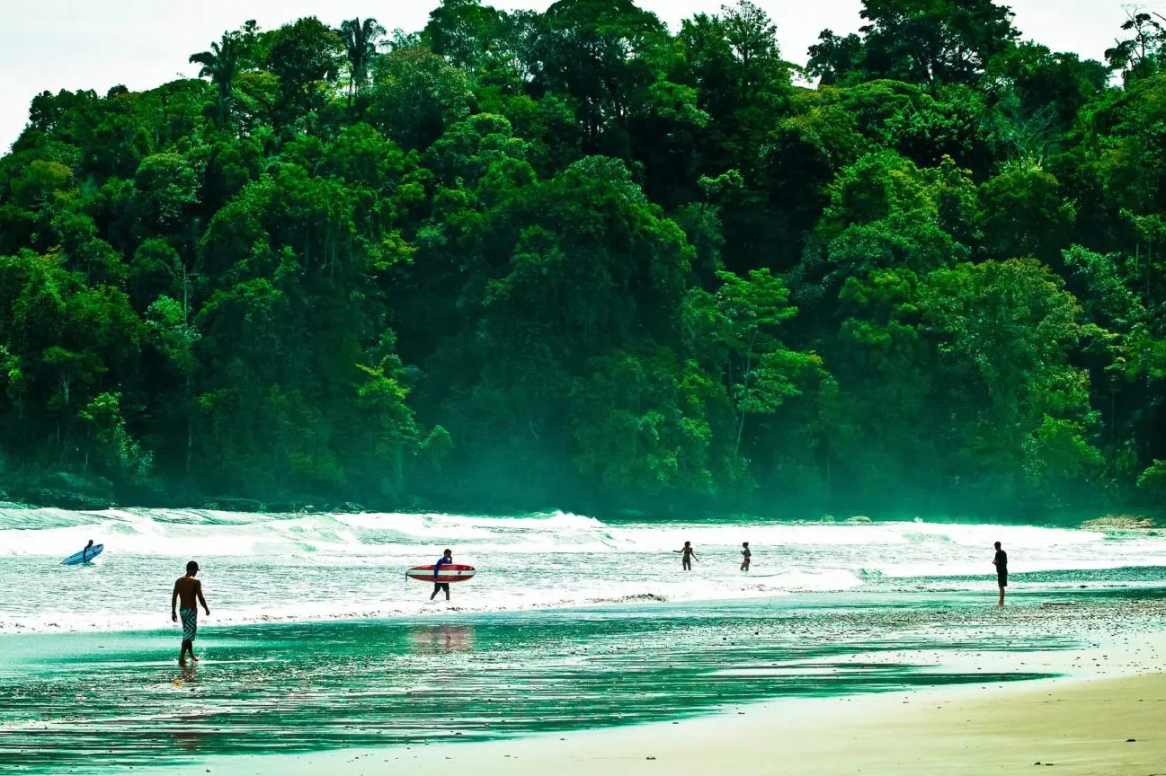 playa hermosa jungle shot with surfers coming out of the ocean