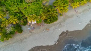 Kalon Surf Camp on the beach aerial view of palmtrees, beach and pacific ocean